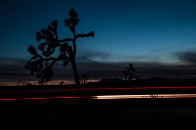 Extended Exposure with Car Streak